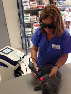 Séance de thérapie au laser